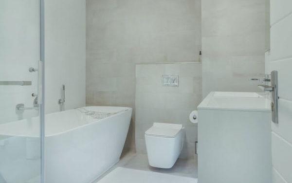 Top 5 Best Bidet Toilet Combo Models • (2021 Reviews & Guide)